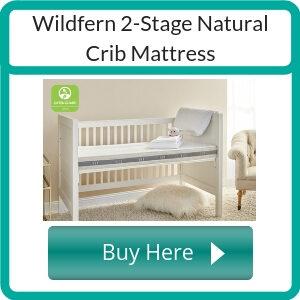 where to buy a non toxic crib mattress (1)