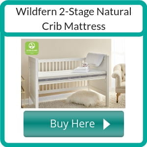 where to buy a non toxic crib mattress (1)
