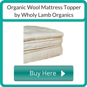 https://shareasale.com/r.cfm?b=997038&u=1463147&m=71414&urllink=www%2Emygreenmattress%2Ecom%2Fproduct%2Fplush%2Dlatex%2Dmattress%2Dtopper%2F&afftrack=