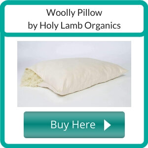 What are the Best Organic Bed Pillows_ (2)