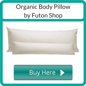 Where to Buy a Non Toxic Body Pillow_ (2)