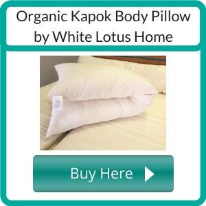 Where to Buy a Non Toxic Body Pillow?