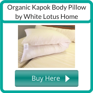 Where to Buy a Non Toxic Body Pillow?