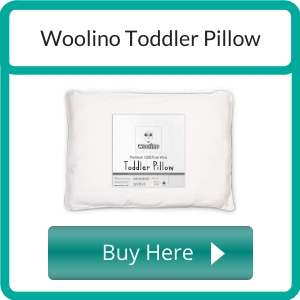 Where to Buy an Organic Toddler Pillow_ (2)