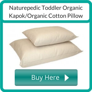 Where to Buy an Organic Toddler Pillow?