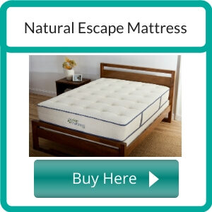 Best Organic Mattresses for Back Sleepers