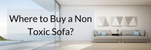 Where to Buy a Non Toxic Sofa_ (4)