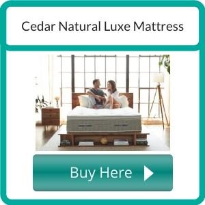 best organic mattress (12)