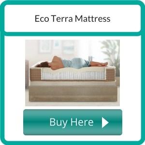 best organic mattress (13)