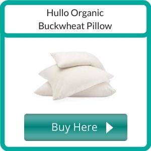 organic buckwheat pillow (1)