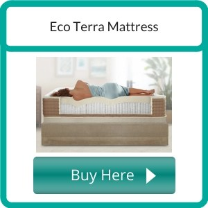 best organic twin mattress