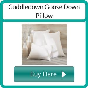 non toxic pillows