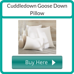 non toxic pillows