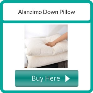 organic down pillow