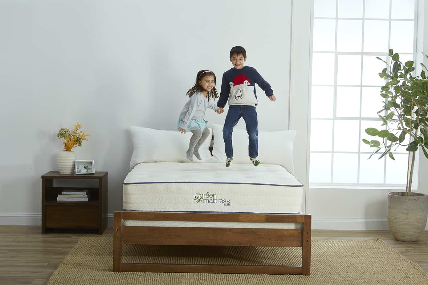 Pure Echo Latex-Free Mattress