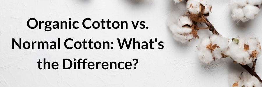 organic cotton vs normal cotton (2)